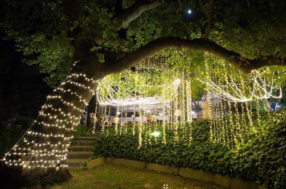 باغ تالار عروسی
